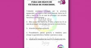 multisectorial mujeres afiche subsidio