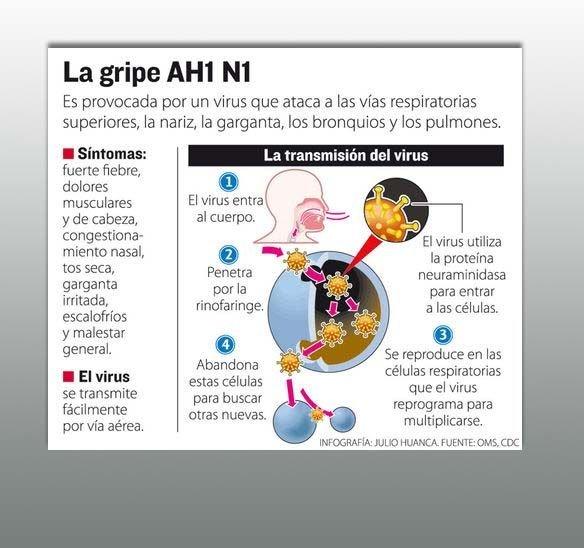 gripe A 01 B